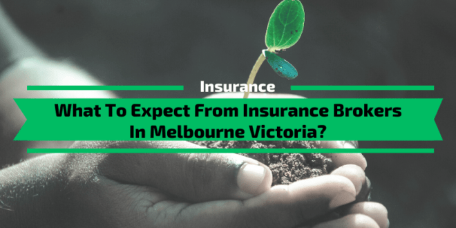What To Expect From Insurance Brokers In Melbourne Victoria?