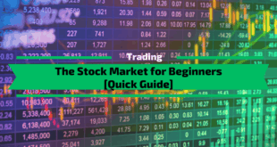 The Stock Market for Beginners [Quick Guide]